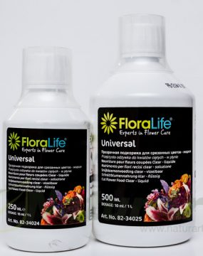 82-34025 HRANA STORAGE 300 CLEAR 500ml FLORALIFE OASIS®