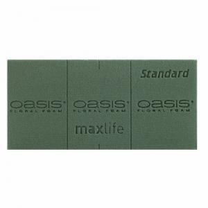 1022 burete umed oasis standard maxlife