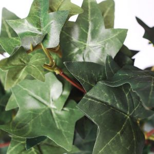 HEDERA ARTIFICIALA